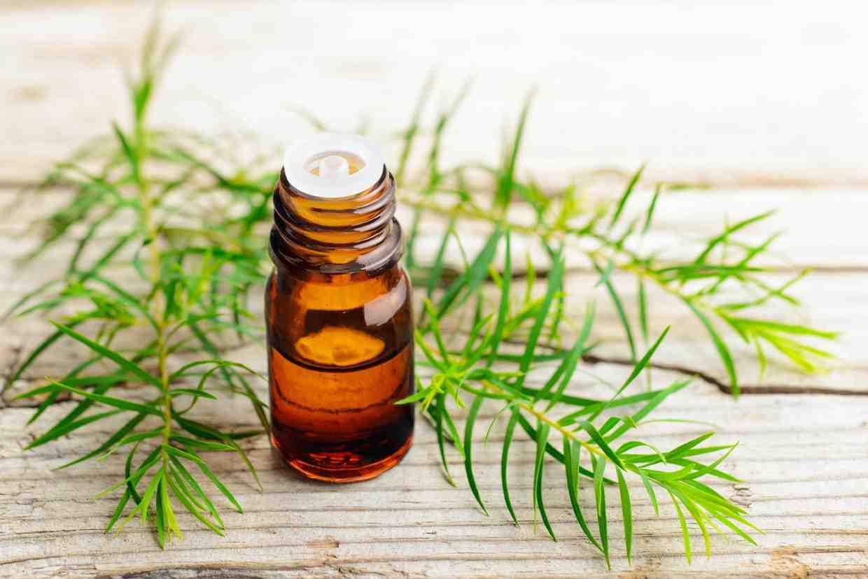 Quel médicament utiliser pour une ado plein d'acné ?